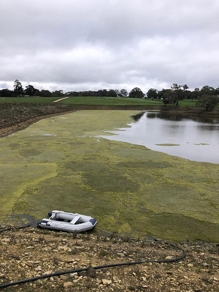 A dam before Dam Floccing in Nairne, Adelaide.