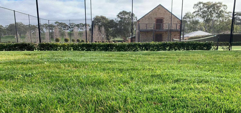 After shot: Residential | Hydroseeding Australia